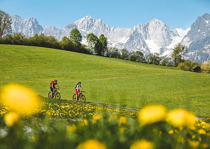 Spring-Mountainbike-1